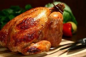Rotis-chick