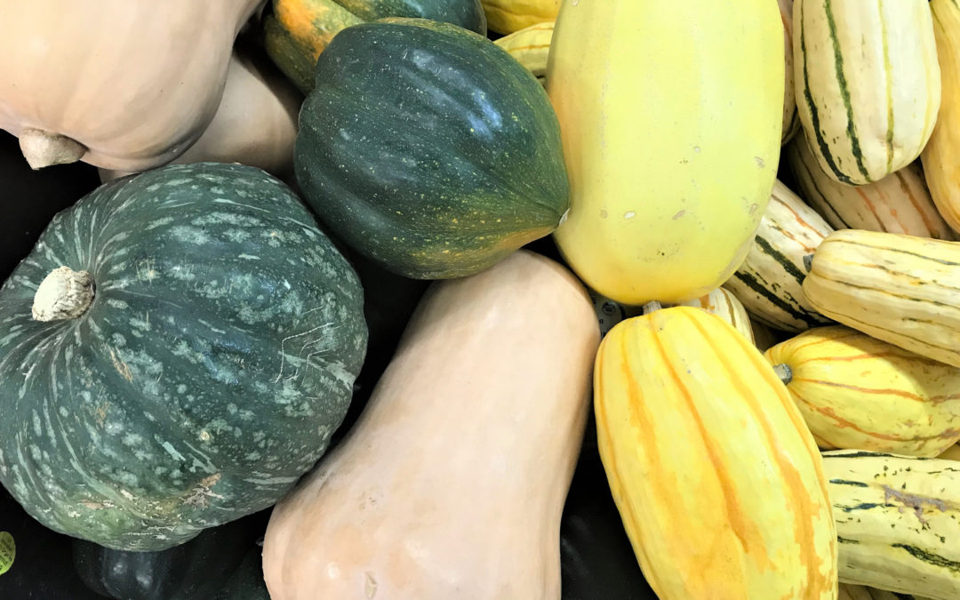 5 Winter Squashes You Must Try